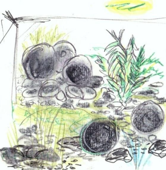 un patio fra cheur et jeux de lumi re arnaud brout jardinier paysagiste p pini res de la. Black Bedroom Furniture Sets. Home Design Ideas