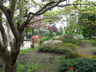Jardin Albert Kahn (112)