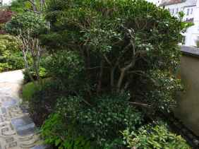 Jardin Albert Kahn (15)