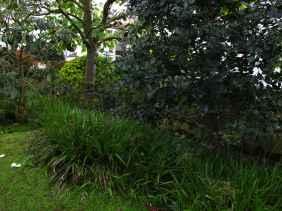 Jardin Albert Kahn (19)