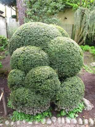 Jardin Albert Kahn (30)