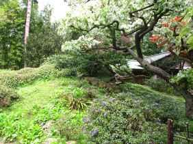 Jardin Albert Kahn (32)