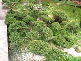 Jardin Albert Kahn (33)