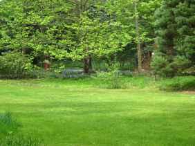 Jardin Albert Kahn (49)