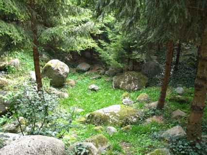Jardin Albert Kahn (52)