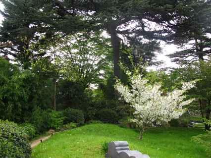 Jardin Albert Kahn (78)