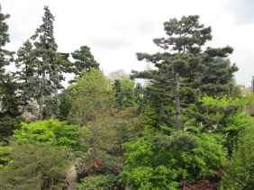 Jardin Albert Kahn (9)