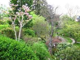 Jardin Albert Kahn (96)