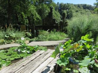 Jardin des fontaines pétrifiantes (1)