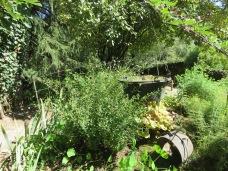 Jardin des fontaines pétrifiantes (18)