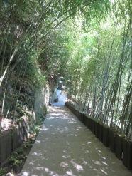 Jardin des fontaines pétrifiantes (2)