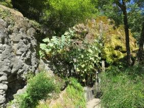 Jardin des fontaines pétrifiantes (25)