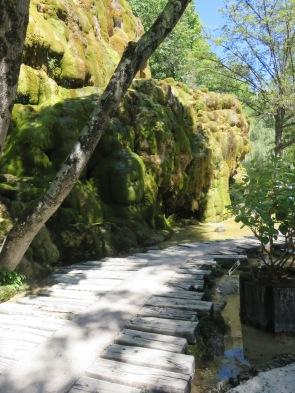 Jardin des fontaines pétrifiantes (31)
