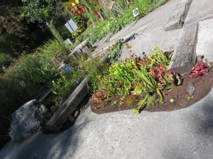 Jardin des fontaines pétrifiantes (68)