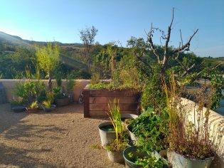 terrasse corten chêne (2)